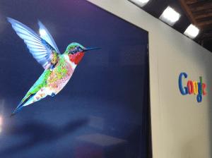 Google-Hummingbird1-300x224